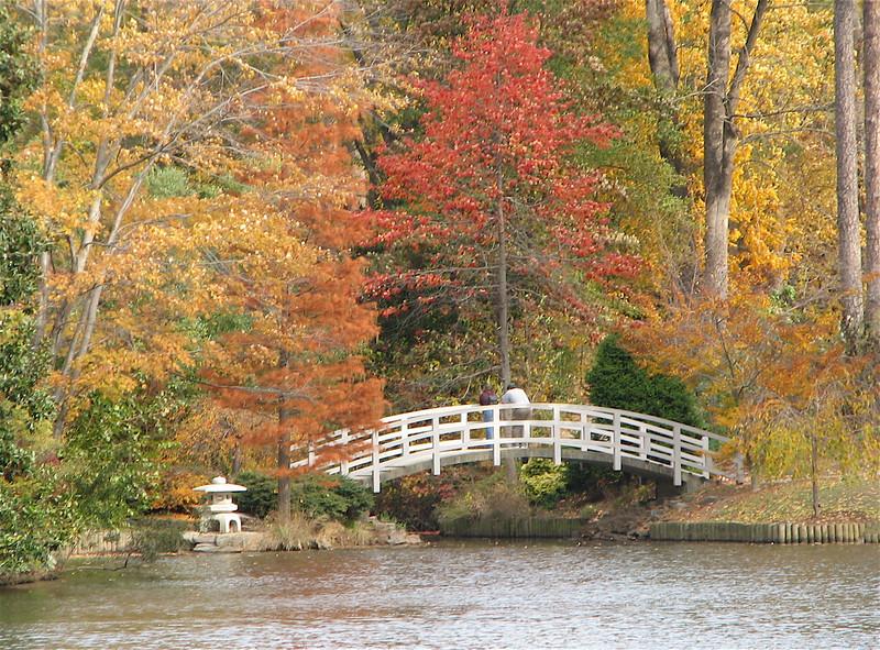 Bridge and Japanese Lantern - Sarah P. Duke Garden