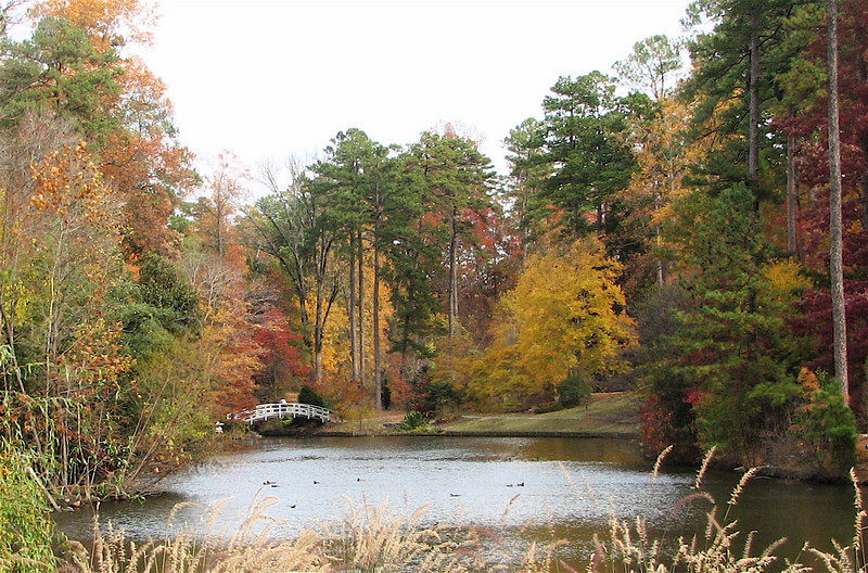 Lake With Bridge - Sarah P. Duke Garden