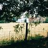 Carl Sandburg's Home - Flat Rock, NC  4-9-04