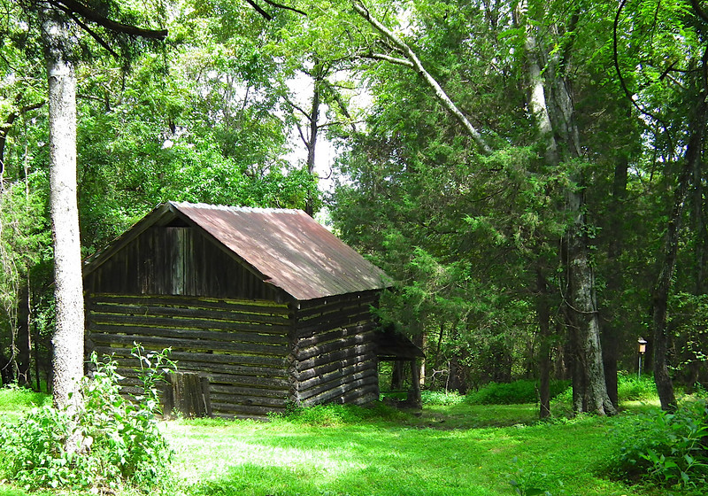 Slave House - Historic Stagville - Durham, NC<br /> One room, one story cabin that probably housed a family of 5-7 people.