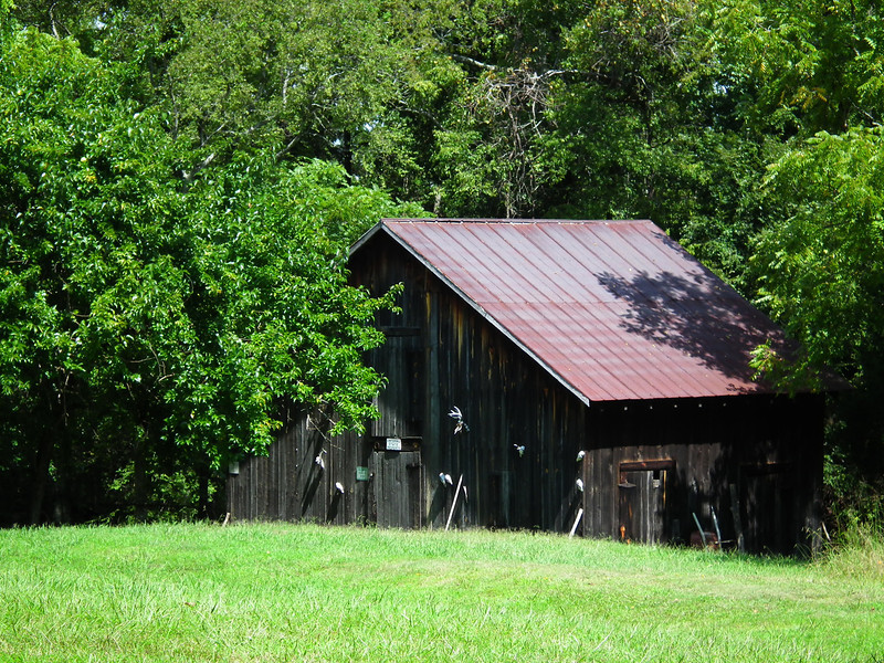 Outbuilding Looks Like a Barn - Historic Stagville - Durham, NC<br /> Some type of barn.  I didn't like seeing the animal heads on the outside so I ventured no closer.