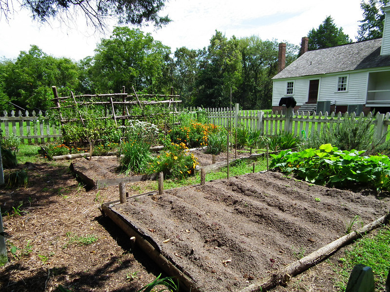 Kitchen Garden - Historic Stagville - Durham, NC<br /> It is believed that a small kitchen garden in this area supplied vegetables and herbs to the cooks.