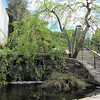 Education Center Area - JC Raulston Arboretum, Raleigh, NC  3-24-11