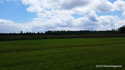 02-20150831FarmCountyNC (6)