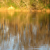 Reflections on Water -River Falls Park - Weldon, NC  11-24-06