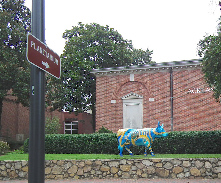Variety of Artistic Bulls Were Seen Around Chapel Hill<br /> This was at the planetarium on the University of North Carolina at Chapel Hill campus.