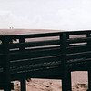 Sand Dunes - Nags Head, Outer Banks, NC  10-27-98