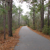 Coastal Woodland Trail - Hugh MacRae Nature Trail - Wilmington, NC