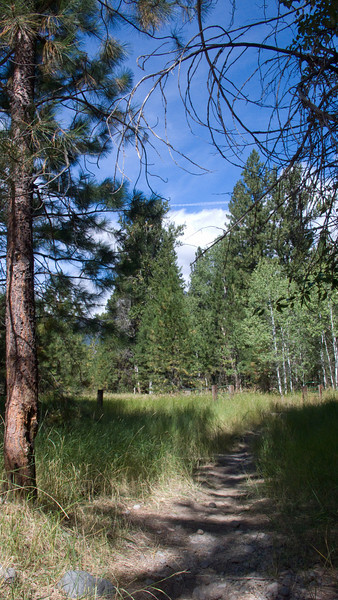 Part of the trails system of for the Methow Valley community, which meanders along rivers.