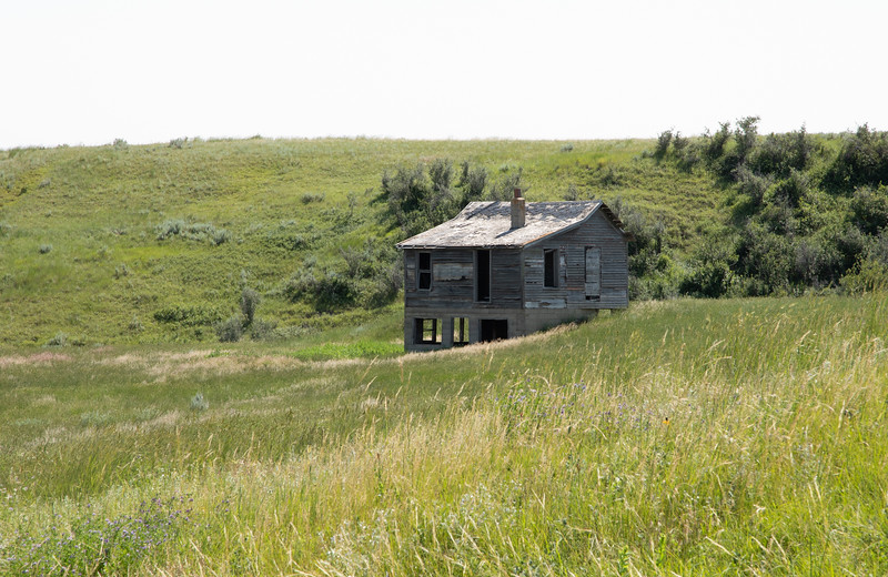 On the N. Dakota Prairie