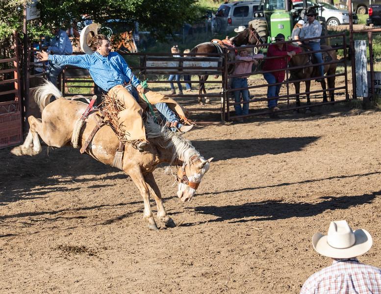 Saddle Bronc - Marmarth, ND