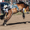 Bare Back Bronc - Marmarth,  ND