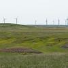 N. Dakota Wind Mills