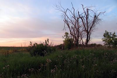 IMG_1392ND sunrise