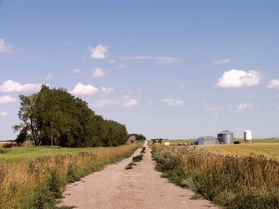 CRW_1480Country Road