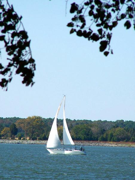 Oxford MD - sail away
