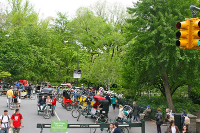 Central Park from the tour bus - or you can have someone bicycle you around