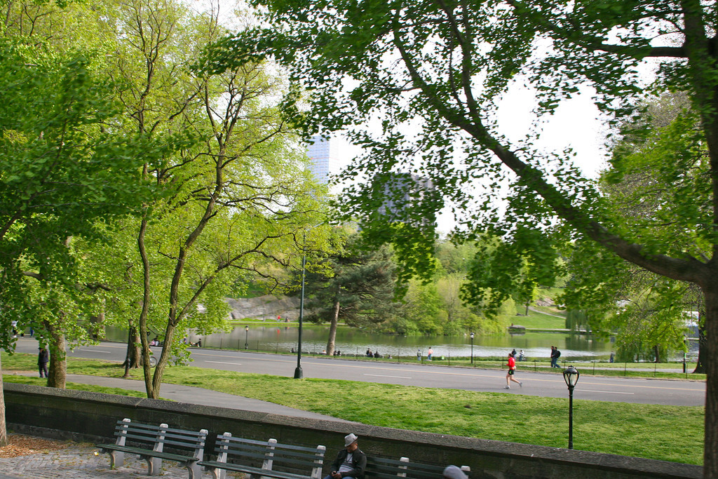 Central Park - you can sleep or jog
