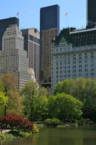 A lake and buildings from Central Park