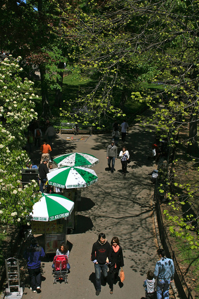 Central Park - from a bridge