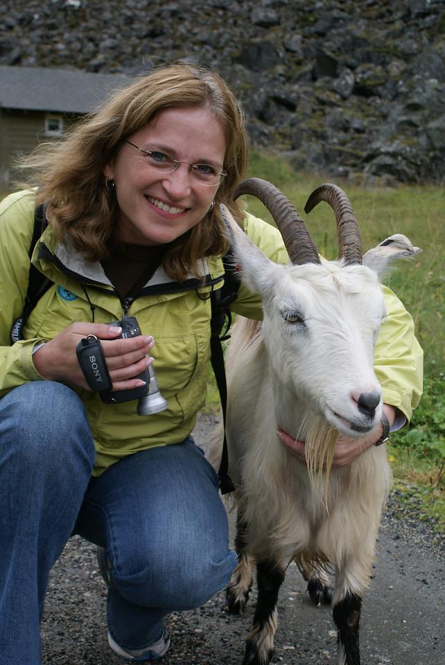 Norwegian wildlife.