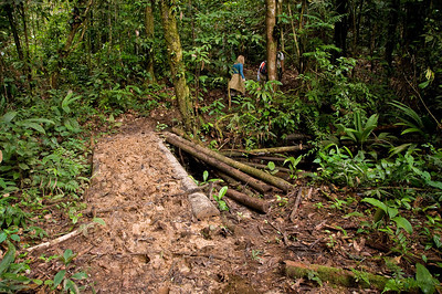 "Other rivers were crossed on ""bridges"" of logs, with the gaps filled in with soft, slippery mud, deep enough to cover shoes if I stepped into a crack."