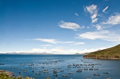 Fish farm in Lake Titicaca