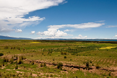 We left Tiwanaku and glimpsed Lake Titicaca - a name that has been in my memory since childhood - a legendary spot, ranking in my mind along with Timbuctoo in exotic remoteness