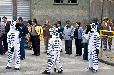 The police dress up to promote the use of - you guessed right - zebra crossings!