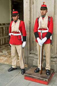 The presidential Guard