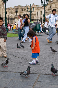The children were more interested in  pigeons
