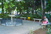 In the Park. The shade trees provide a welcomr relief from the heat