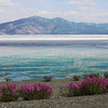 """Where the Alcan Highway skirts Kluane Lake spring was evident listening to the melting ice """"tink-tink"""" like small bells. June 7, 2009."""