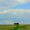 0015-North to Alaska- abandoned farm house, north of Bismarkl, ND, may 25, 2015, 418pm CIMG0040b