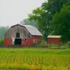0008-North to Alaska-Grandpa's farm, Albany, WI, may 24, 2015, 1055am DSCN9746 4320x3240