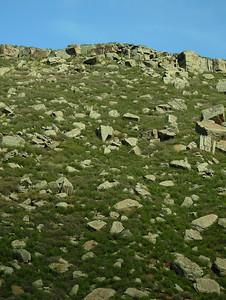 Larimer - Rocky Slope