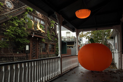 Provincetown - Huge Pumpkin