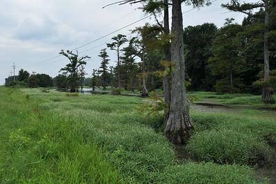 Clarksdale - Mississippi Roadside