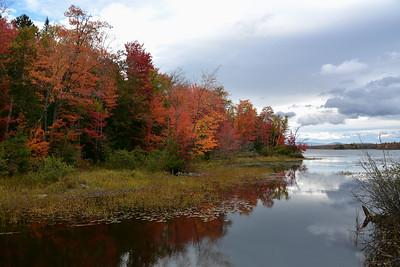 Wentworth - Autumn Creek Colours