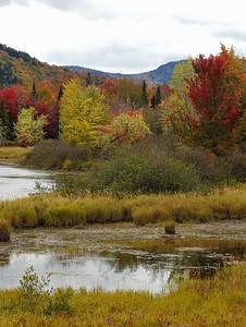 Wentworth - Bear Brook Marshlands