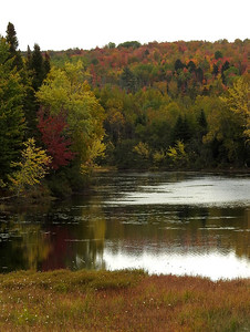 Wentworth - Bear Brook Wetland