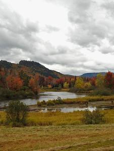 Wentworth - Autumn Marshland