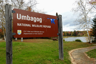 Wentworth - Umbabog Refuge