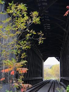 Wolcott - Bridge in Autumn Leaves