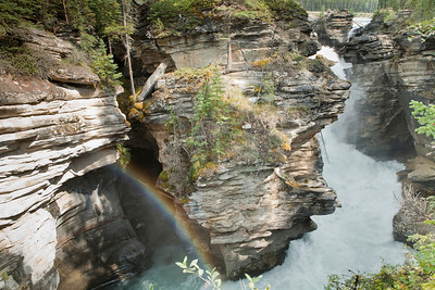 Athabasca Falls in Japser National Park, Alberta.