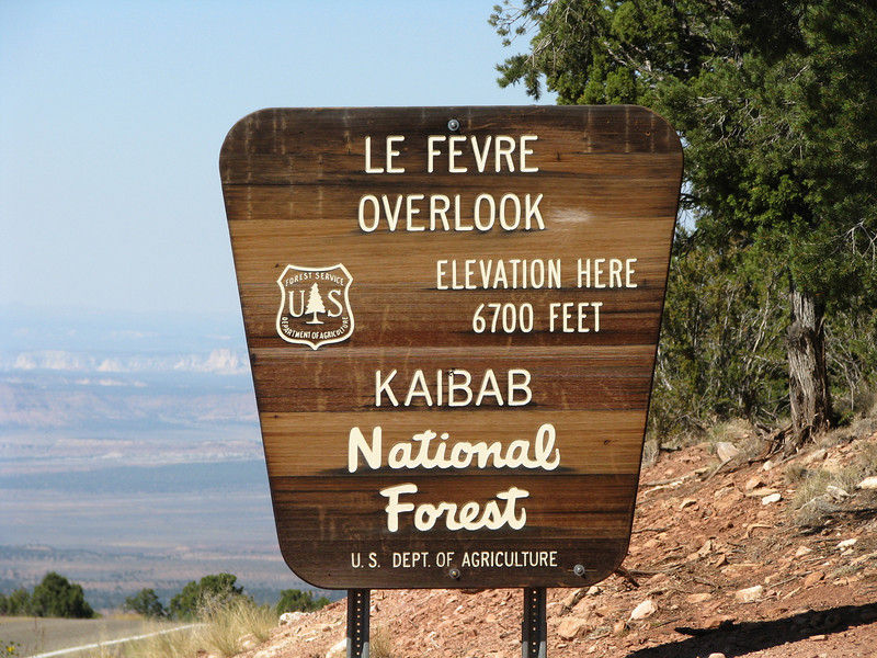 Kaibab National Forest also a new area for us.
