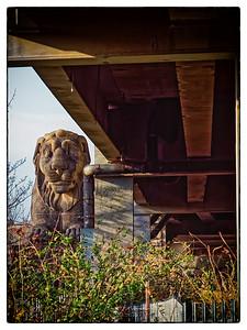 Industrial Lion