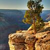 Pima Point, South Rim of the Grand Canyon, Arizona