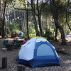 Our campsite at MacKerricher State Park.