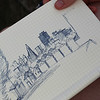 A lovely young man from Ireland was sketching the Painted Ladies.  Not bad!